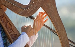 В начале и в конце каждого сеанса, будет звучать живая музыка древних инструментов