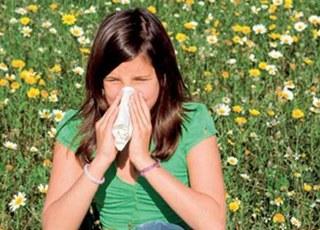 аллергия на цветение березы куда уехать