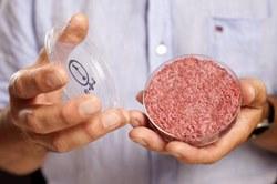 Исследование: Молодежь против замены натурального мяса на искусственное