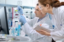 ВОЗ объявила о начале масштабного международного исследования медикаментов для лечения COVID-19